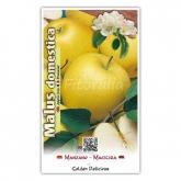 Manzano Golden (Malus domestica)