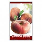 Paraguayo (Prunus platycarpa)