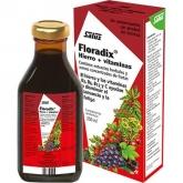 Floradix xarope ferro Salus, 500 ml