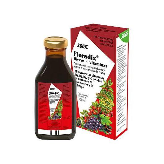 Floradix sciroppo ferro Salus, 500 ml