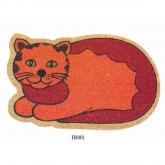 Zerbino gatto