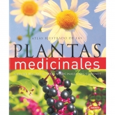 Atlas ilustrado de las plantas medicinales