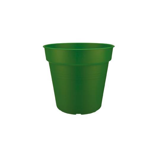 Vaso Green basics forest green