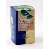 Té Ginkgo concentrazione 20 sacchi da 1 g bio