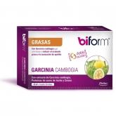 Garcinia Cambogia Biform, 48 comprimidos