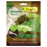 Tira de semillas Siembra Fácil lechugas