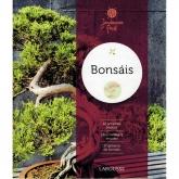 Bonsais (Jardinería fácil)