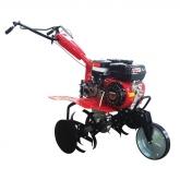 Motozappa Campione TM500