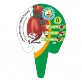 Plantón Tomate Santonio injertado maceta 10,5 cm de diámetro