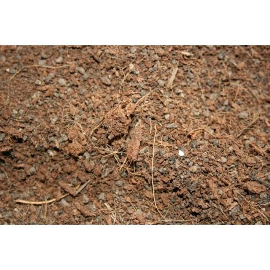 Conjunto sustrato coco-humus mesa de cultivo acero zincado 120 x 60