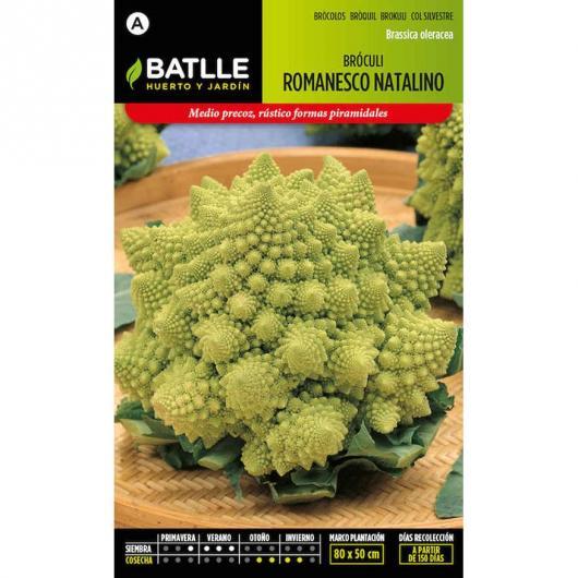 Semi di Broccolo Romanesco Natalino