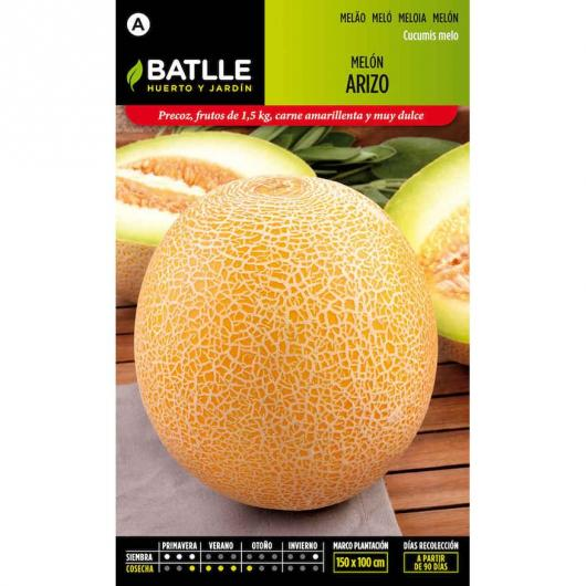 Graines de melon Arizo