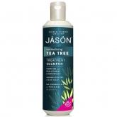 Shampoo equilibrante albero del té Jason, 517 ml