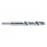 Wolfcraft 7716010 - 1 punta per pietra