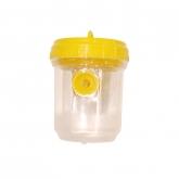 Trappola di plastica per vespe
