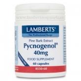 Pycnogenol® 40mg Lamberts, 60 capsules