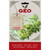 Sementes de mostarda bavicchi GEO para germinar, 50 gr