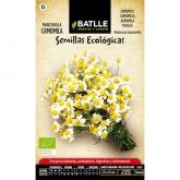 Organic camomile seeds