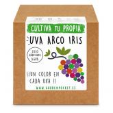 Kit semina Uva arbobaleno iris Garden Pocket