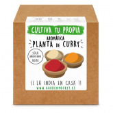 Kit semina aromatica Curry Garden Pocket