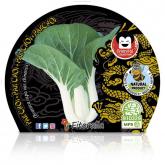 Plantón ecológico de Pak Choi maceta 10,5 cm de diámetro