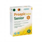 Proapic Jalear Senior 750 mg Sakai, 20 viales