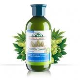 Shampoo Ampu Antiforfora al luppolo, timo e finocchio Corpore Sano, 300 ml