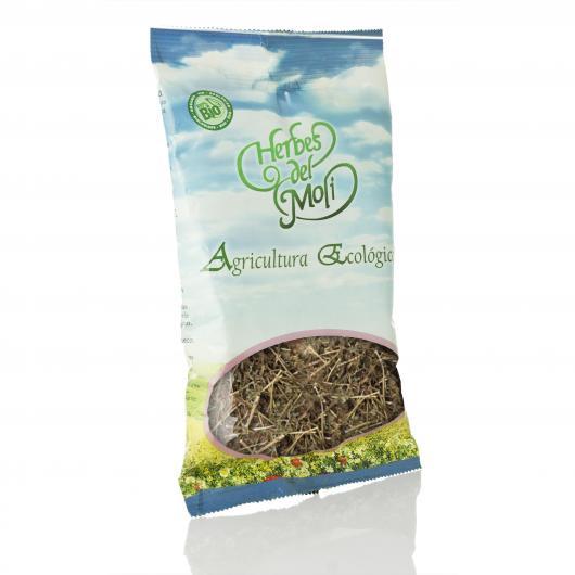 Abrotano Maschio in pianta Herbes del Molí, 60 gr