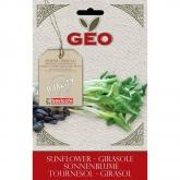 Sementes de girassol para germinar, bavicchi GEO 80 g