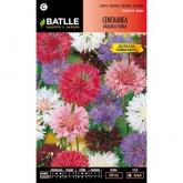 Semi di Centaurea doppia varietà