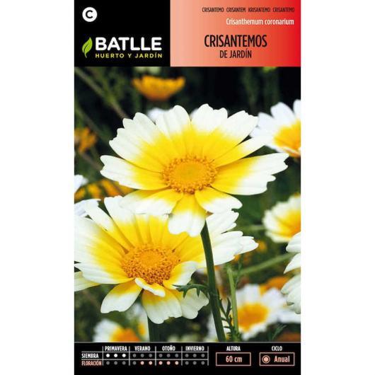 Semillas de  Crisantemos de jardín