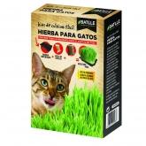 Kit cultivo Mix Ervas para Gratos, Batlle