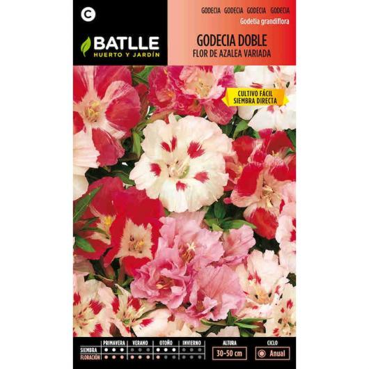 Semillas de  Godecia doble flor de azalea variada