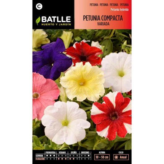 Semillas de  Petunia compacta variada