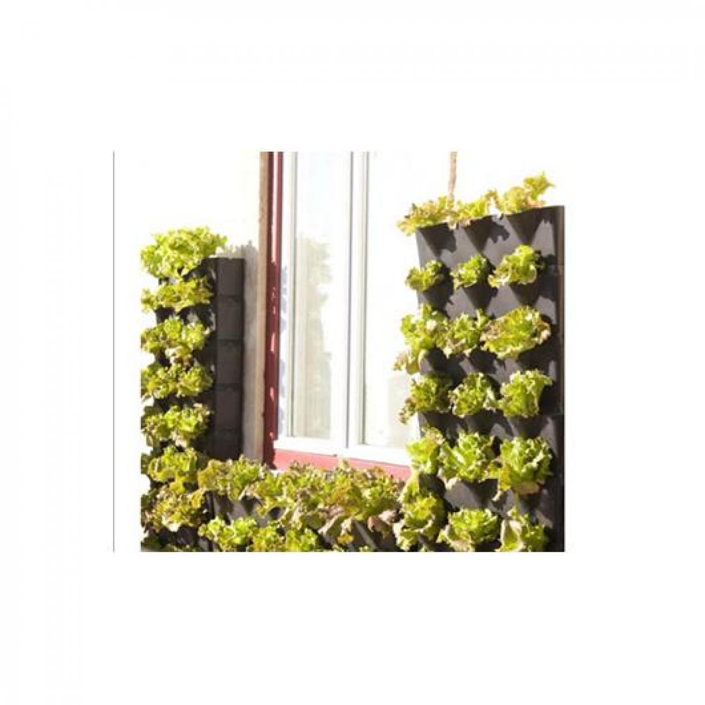 jardim vertical venda:Jardim vertical minigarden preto por €51,45 em Planeta Huerto