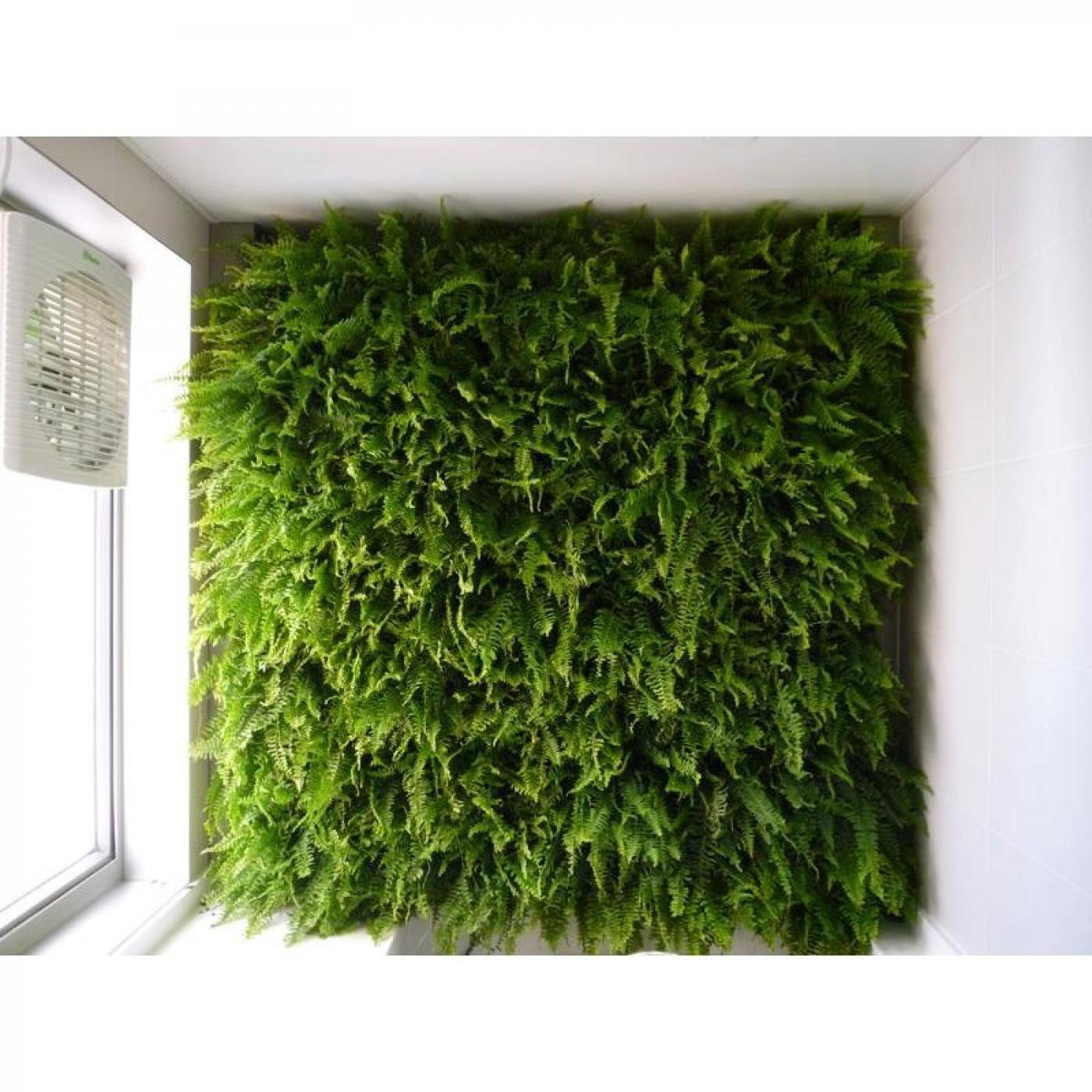 jardim vertical venda:Jardim vertical minigarden cor cinza por €51,45 em Planeta Huerto