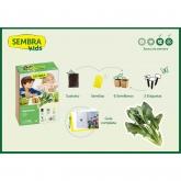 Kit mini coltivazione per bimbi Spinaci Sembra