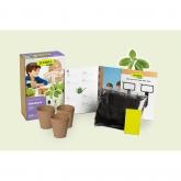 Kit di coltivazione basilico per bambini Sembra