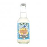 Boisson rafraîchissante au citron Naturfrisk, 25 cl