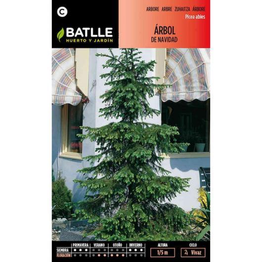 Semillas de  Árbol de Navidad