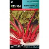 Sementes de ruibarbo vermelho folha Victoria