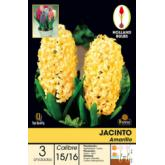 Bulbo Jacinto Amarillo 3ud