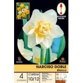 Bolbo Narciso duplo branco 4 ud
