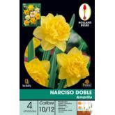 Bulbo Narciso Doble Amarillo 4ud