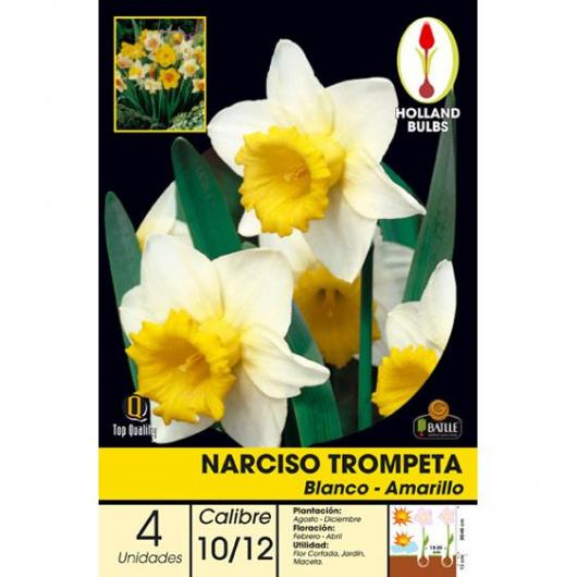 Bulbo Narciso Trom. Blanco-Amarillo 4ud