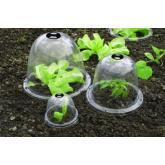 Campana de cultivo con ventilación 3ud