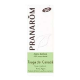 Oleo Essencial Tsuga Do Canadá BIO Pranaróm, 5ml
