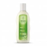 Shampoo equilibrante com trigo Weleda, 190 ml