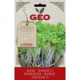 Sementes de manjericão para germinar, bavicchi Geo, 5 gr