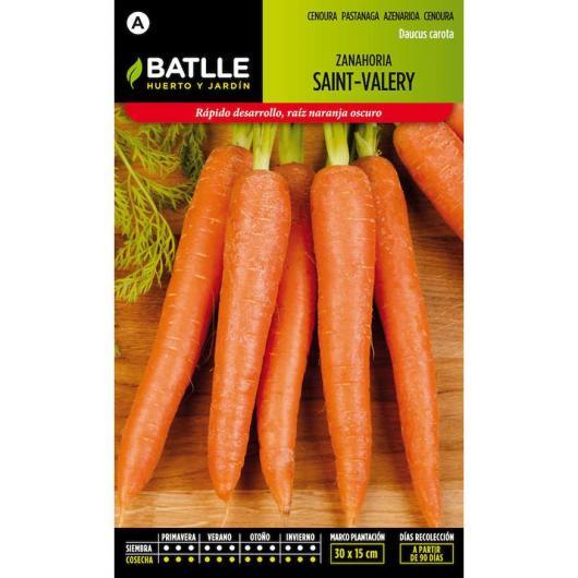Graines de carotte de Saint-Valéry très précoce